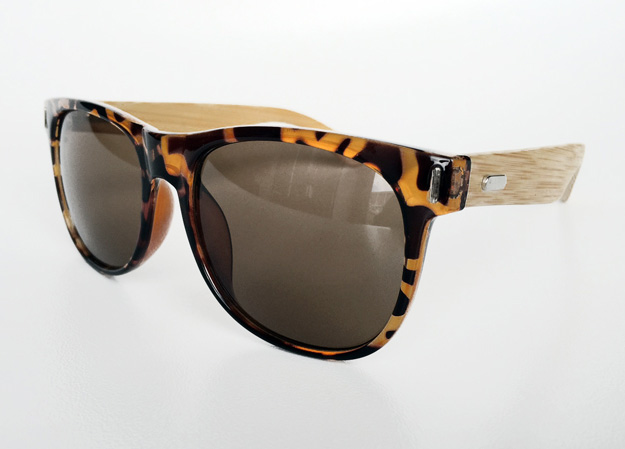 Brown wayfarer with bamboo