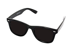 Wayfarer with dark lenses