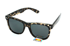 Polaroid Wayfarer sunglasses. Cheap and popular